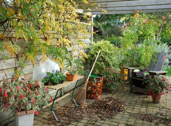 ambiance-automne-2-l750-h512.jpg