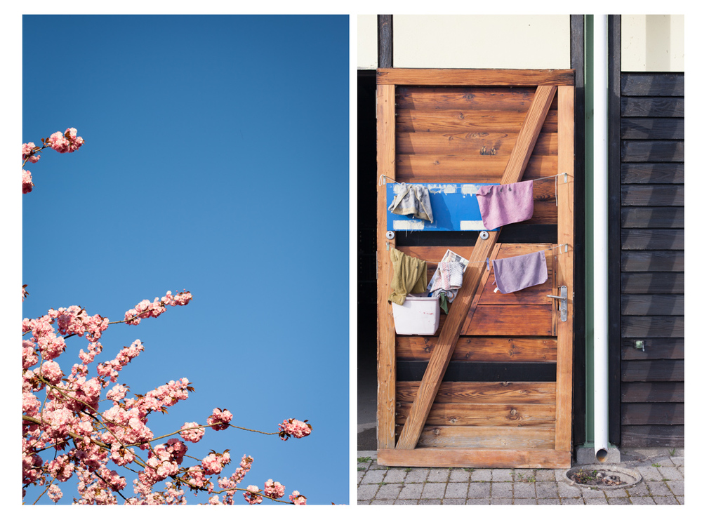 diptych-spring-boathouse.jpg