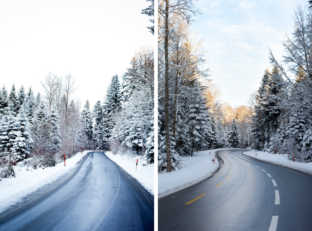 forest_road_winter_diptych.jpg