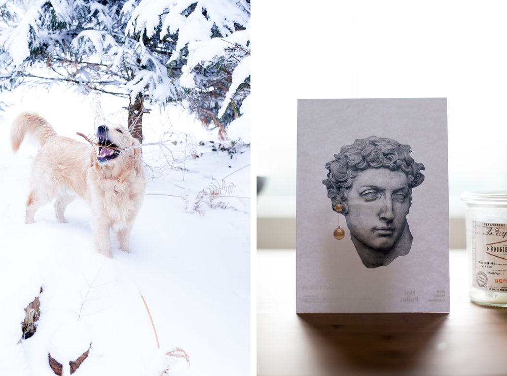 dog_winter_home_decor_diptych.jpg