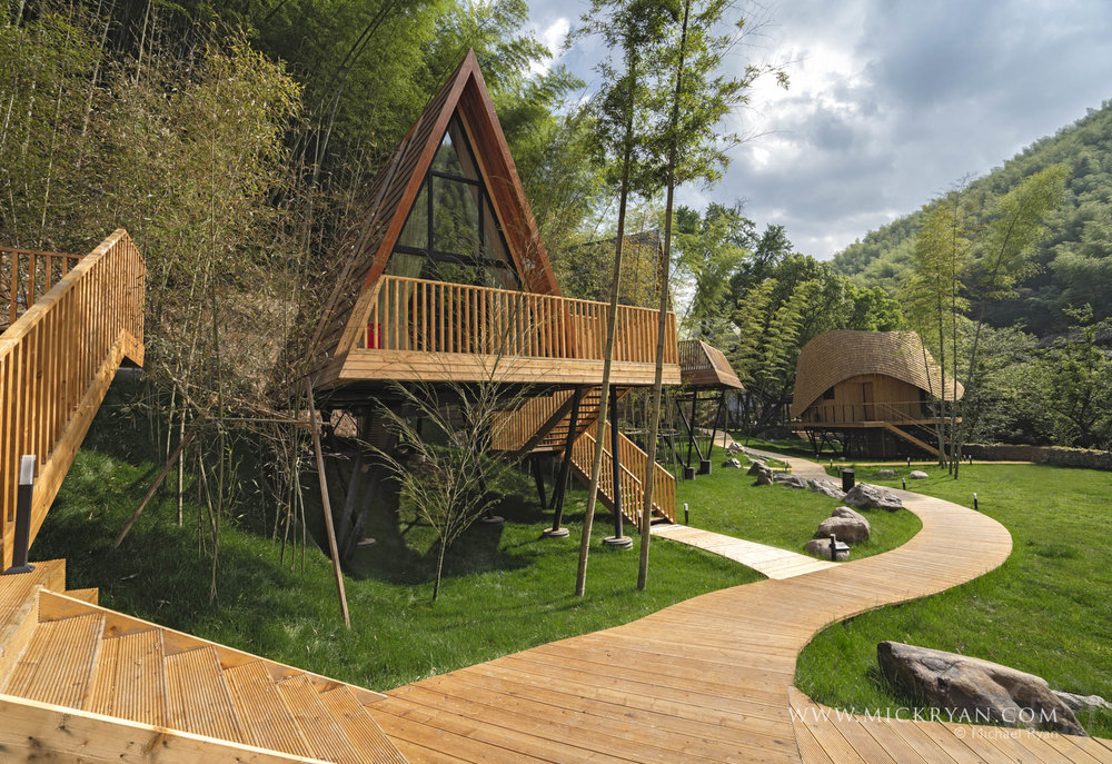 Tree Wow.5 star accommodation in the woods in the countryside in China. Who'd have thought?
