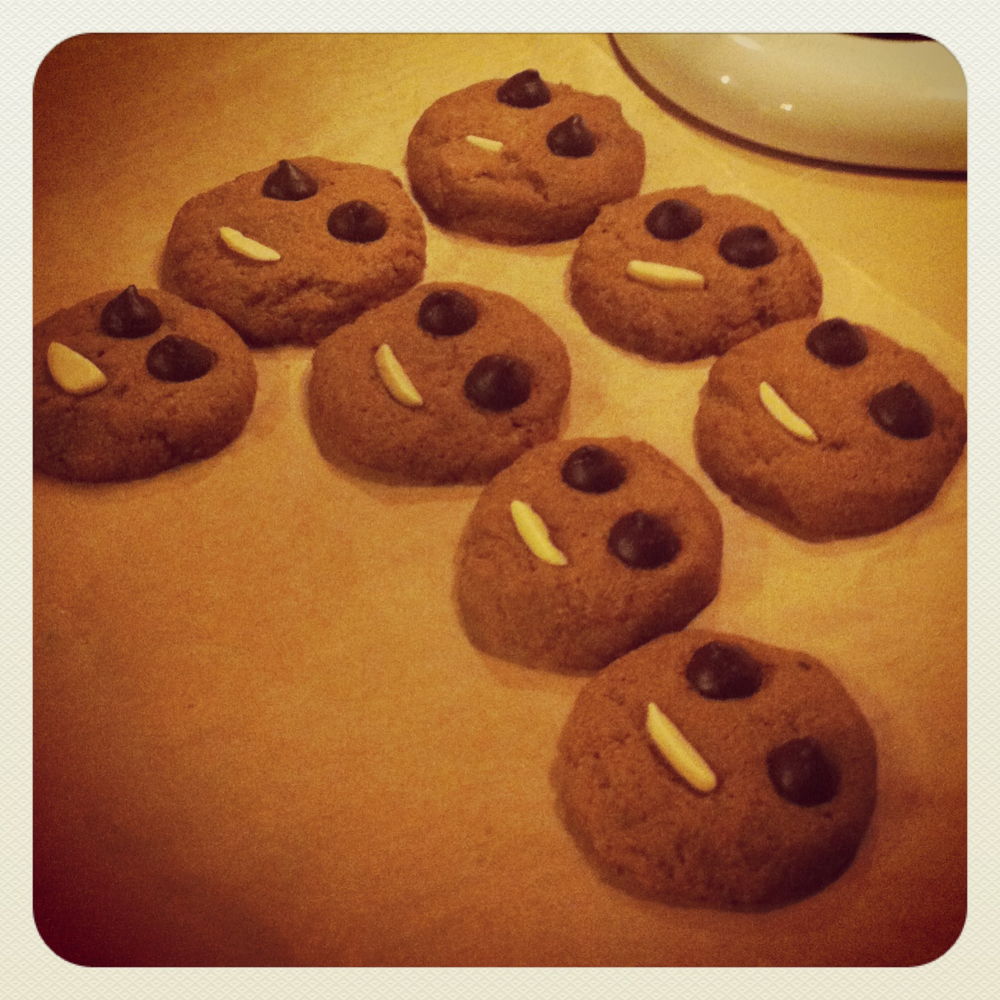 This is the only picture I have of these cookies, but they are cute. We decided a batch needed chocolate chip eyes and an almond mouth. To be honest, I'm not even sure this is the same recipe, but since these are my go-tos (and this is not a food blog) I have never actually photographed them!