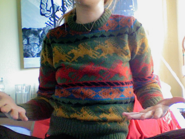 I feel like this former pullover (gone now, sadly) is on its own the basis for a color palette.
