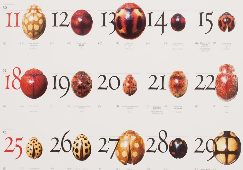 堀場製作所カレンダー2011年