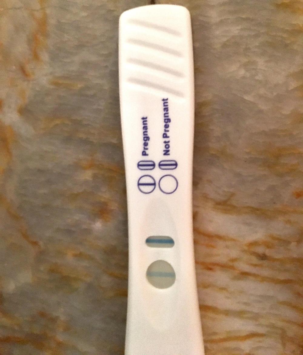 Pregnancy 1.png