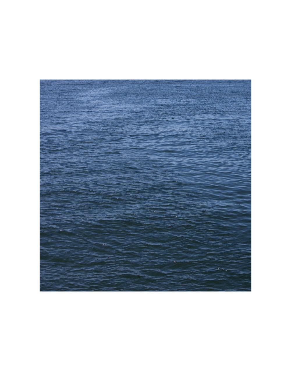 Puget Sound (2014)