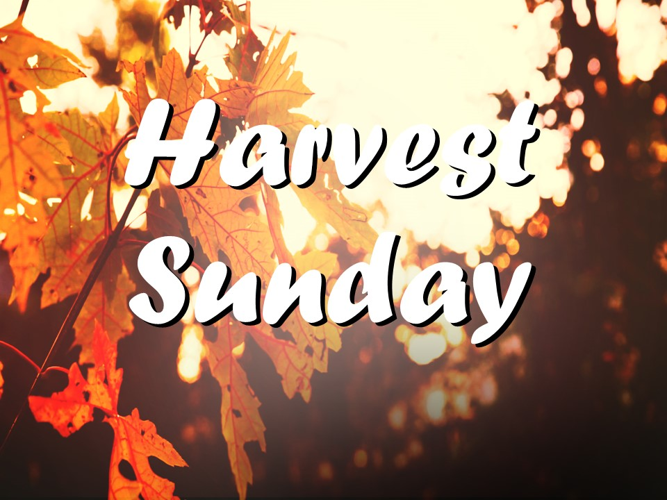 Harvest Sunday 2017.jpg
