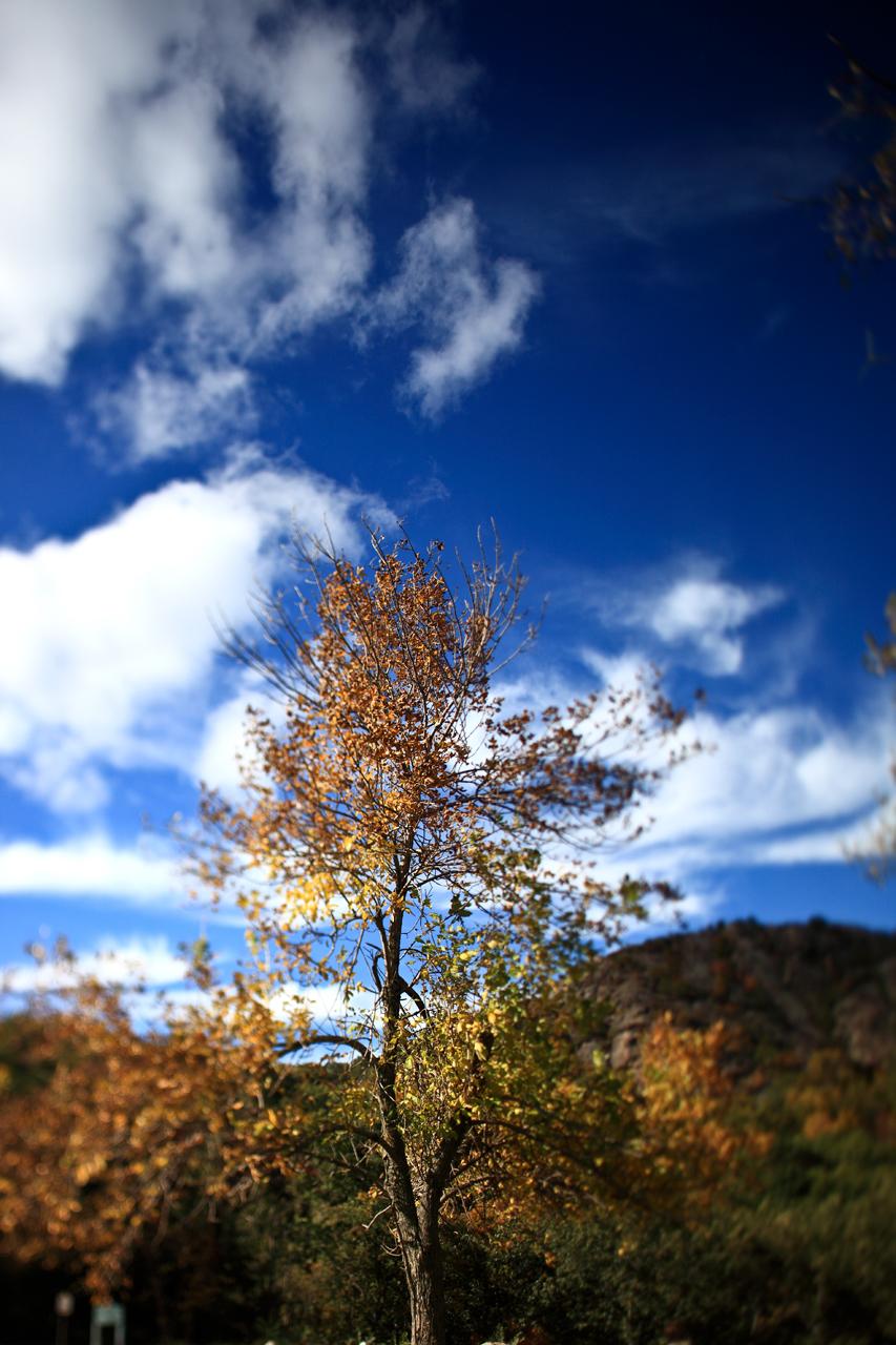 blue-sky-day_4034714490_o.jpg