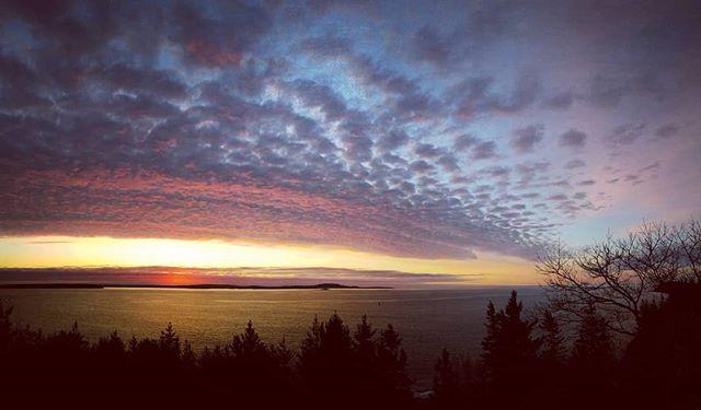 Maine mornings.