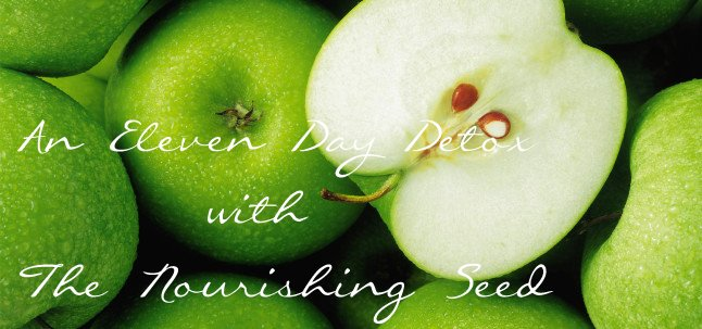 The Nourishing Seed.jpg