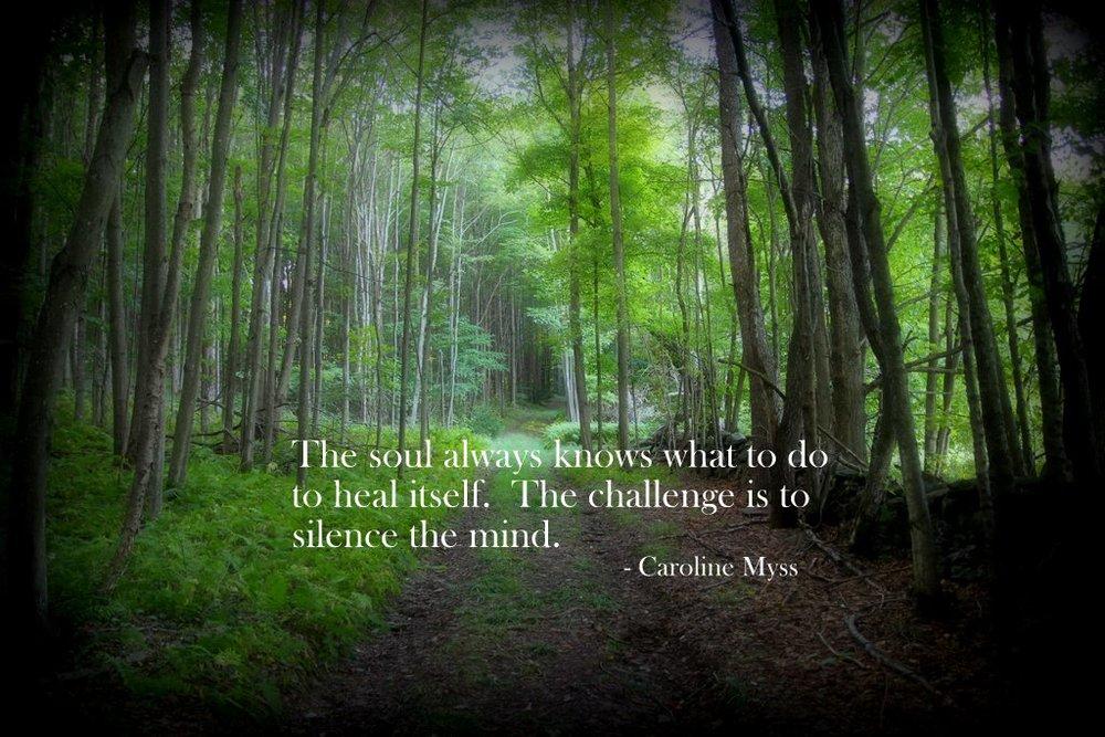 Carolyn Myss Quote.JPG