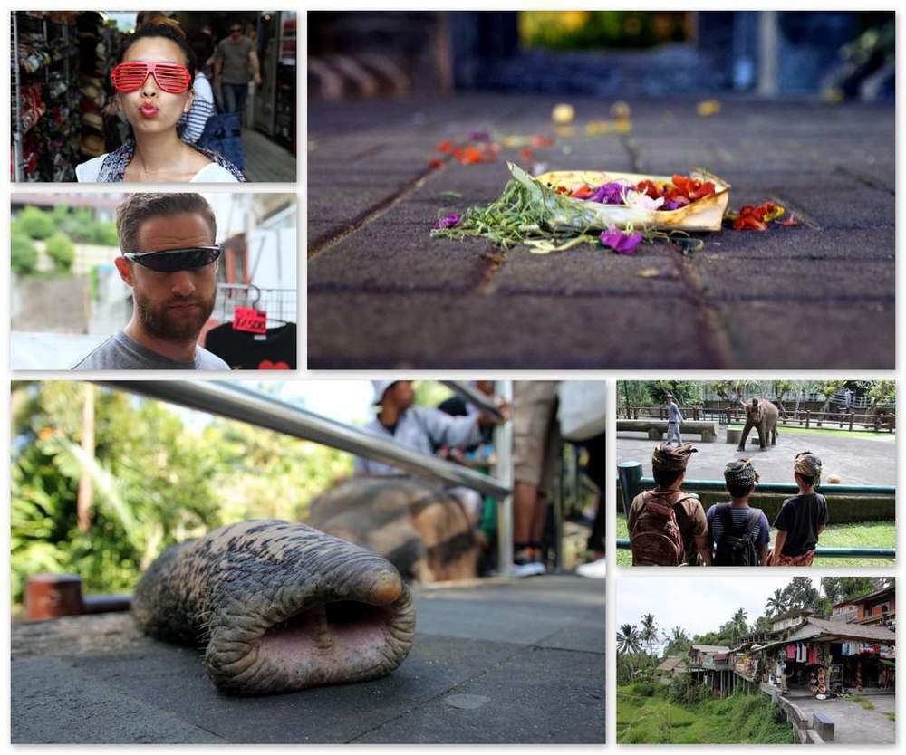 Bali collage.jpg