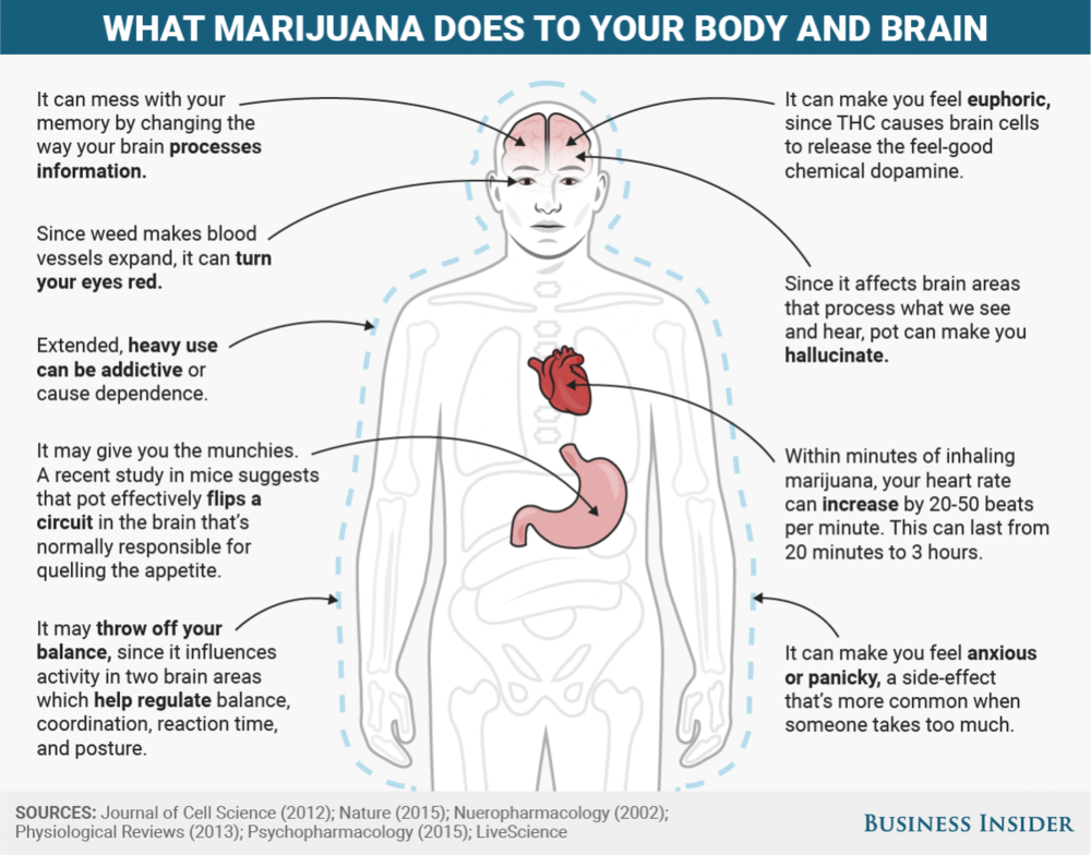 BI-Graphics_What marijuana does to your body and brain.png