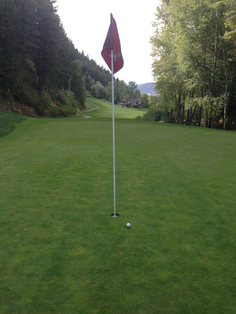 Almost_Eagle_Vail.jpg