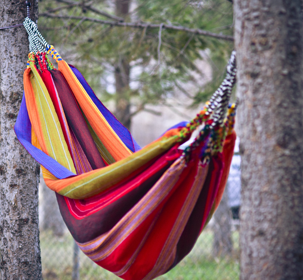 hammocks in trees 1.jpg