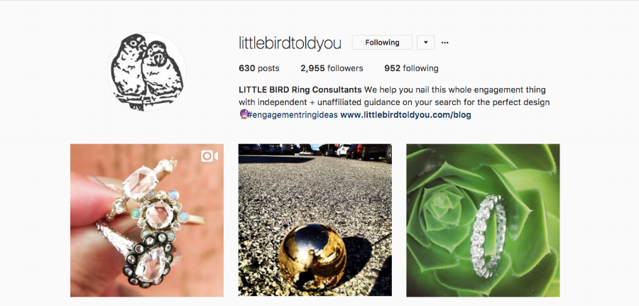 Follow @littlebirdtoldyou on Instagram right now!