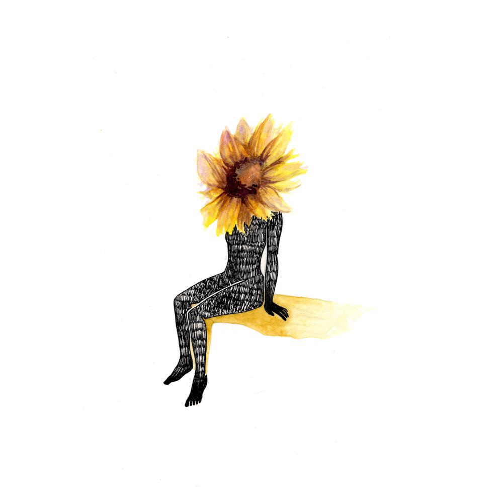 029_sunflowerHead.png