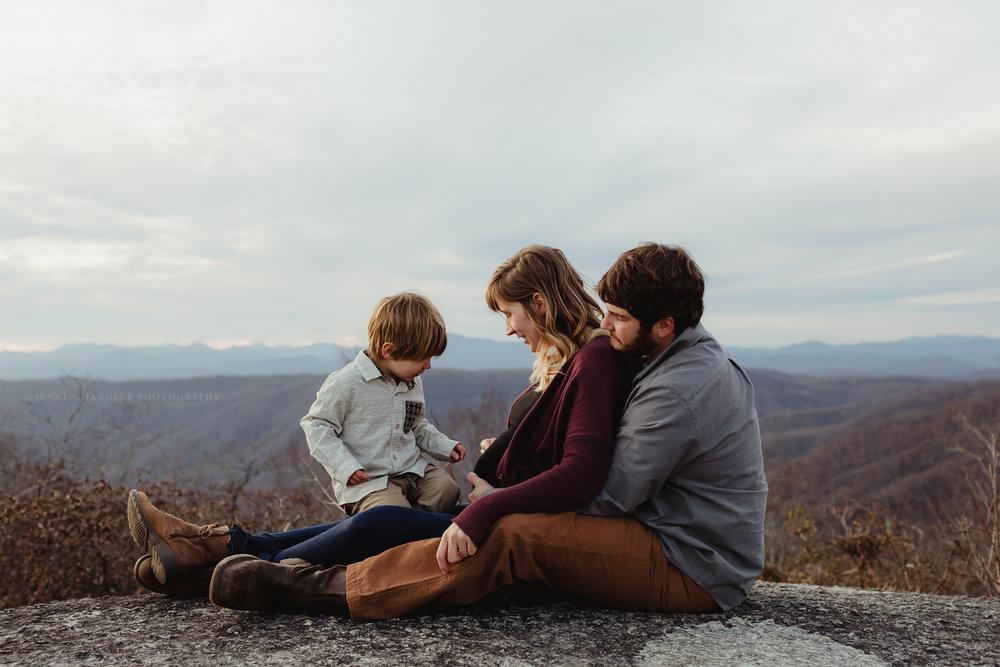 jennichandlerphotography_brevardnc_andimaternityfamily_WEB-33.jpg