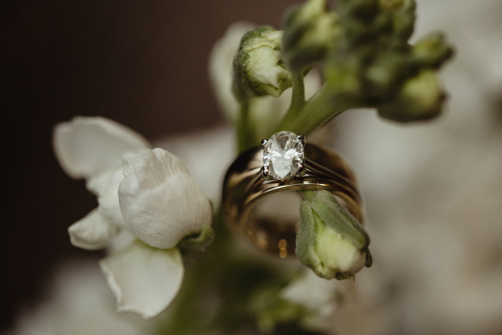 2018jennichandlerphotography_brevardnc_krisandfieldwedding_WEB-443.jpg