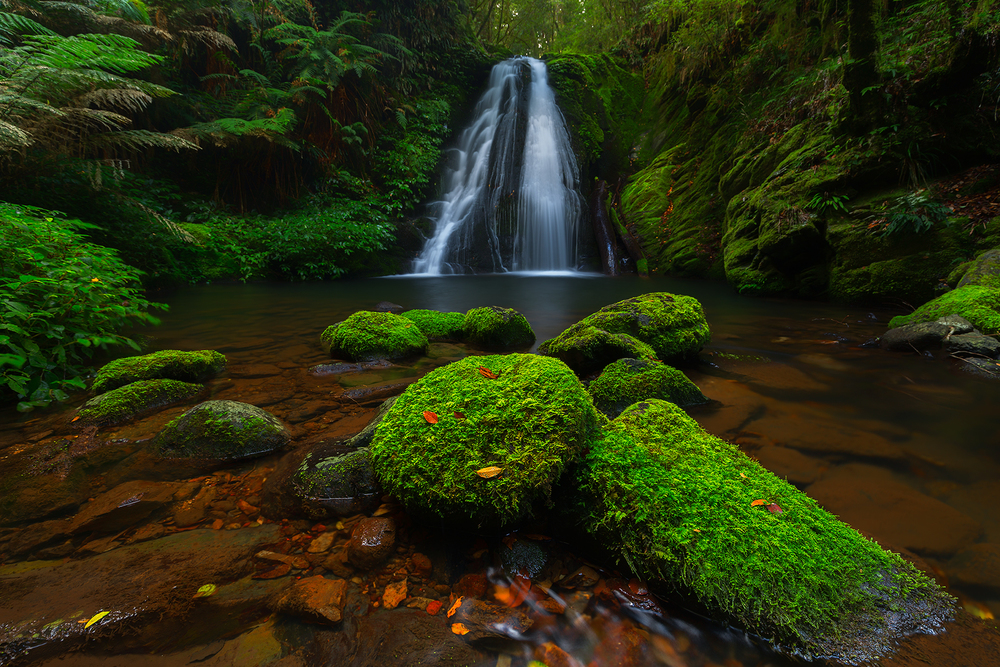 stunning waterfall in the New England National Park