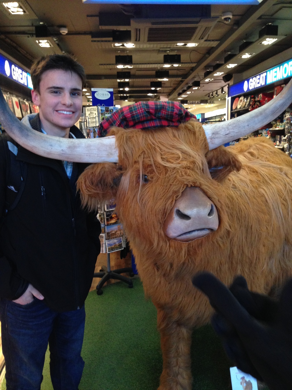 My first Highland cow - Edinburgh, Scotland