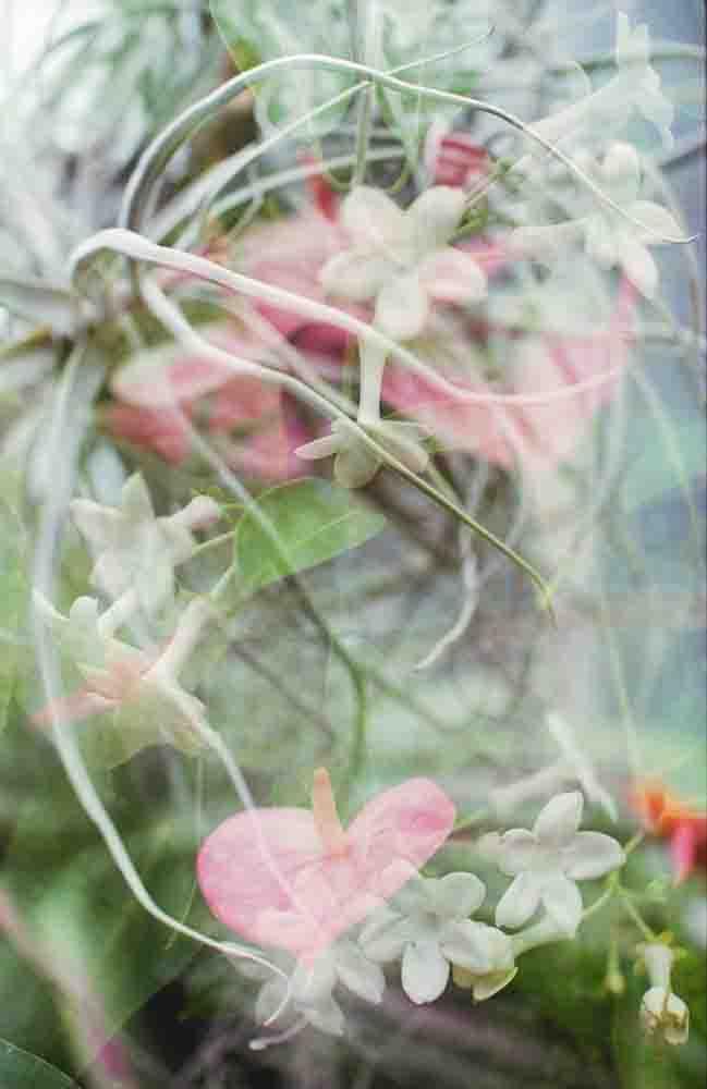 102415 - Conservatory_400H_01.JPG
