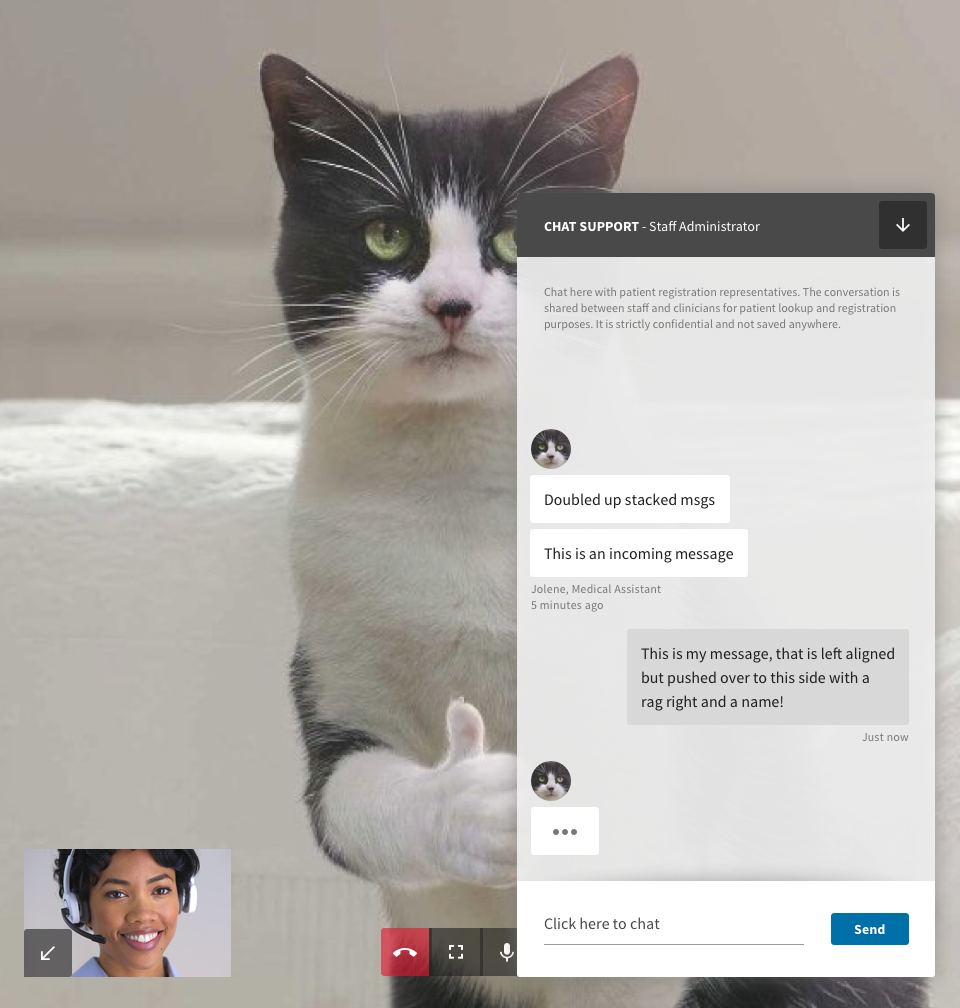 Pared down video interface for virtual triage service, with text chat.