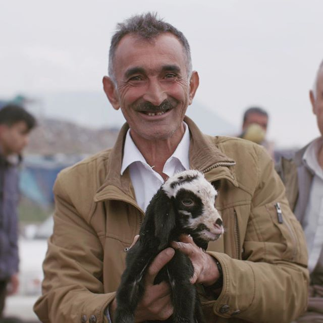 Kurdish man with 🐐 #civilians #refugeeresponse #refugeestories #refugeecamp #refugeescrisis #refugees #goat #kurdish #happy #refugeeswelcome  #photooftheday #portrait