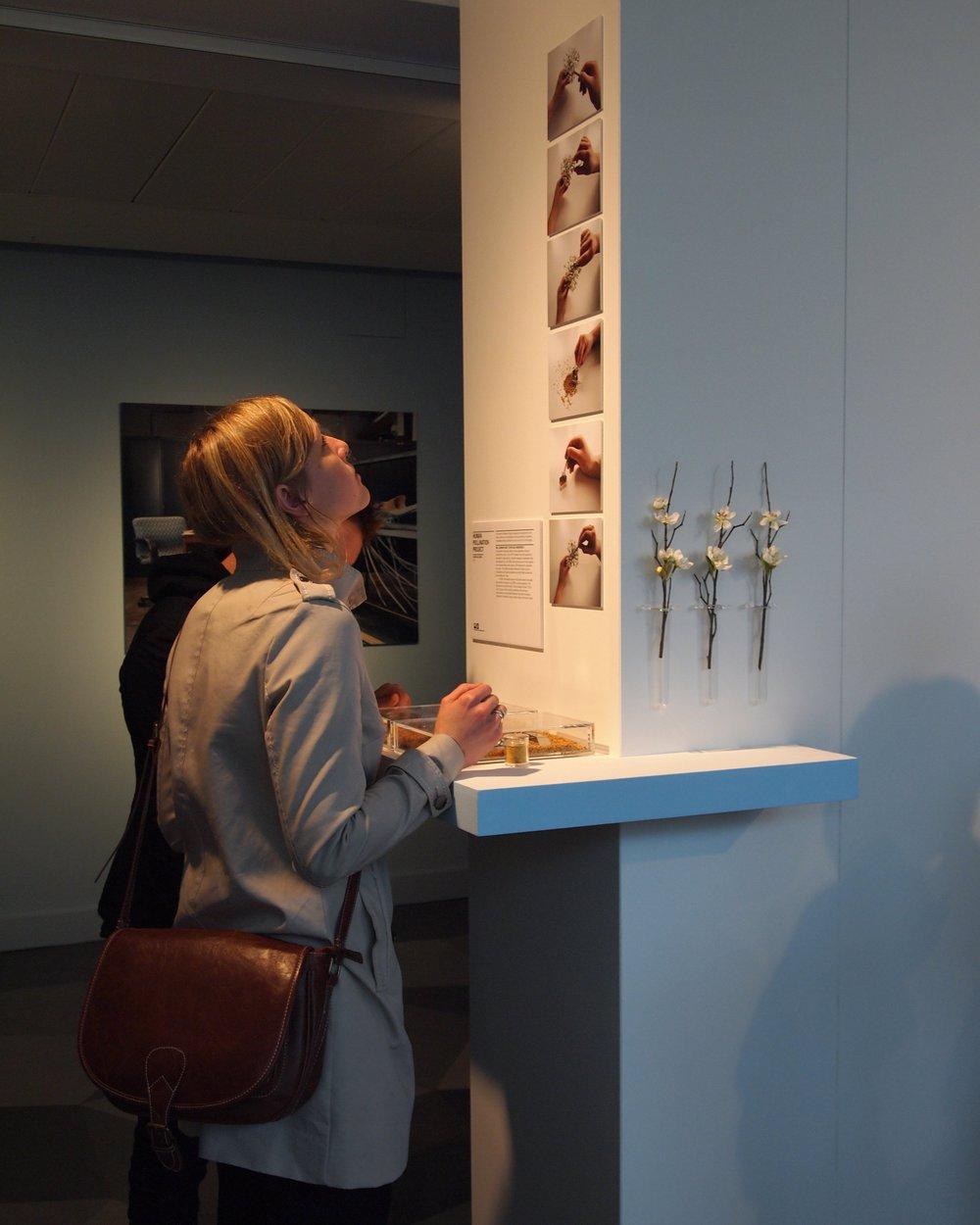 Science_Gallery_Dublin_2011.jpg