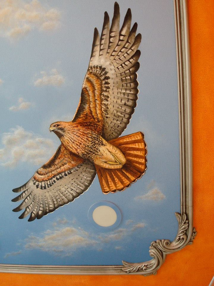 3' Hawk, Sky, Faux & Moulding by Matthew McAvene