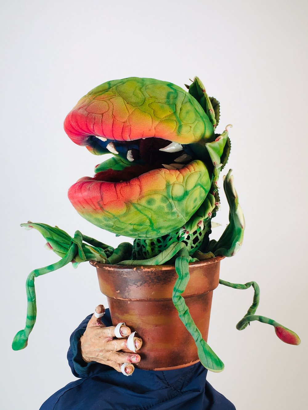 Little shop of Horrors Rental Audrey 2 (Puppet #2of4) by McAvene.jpg