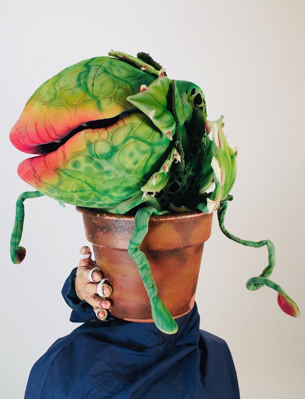 Little shop of Horrors Rental Audrey 2 (Puppet #2) by McAvene.jpg