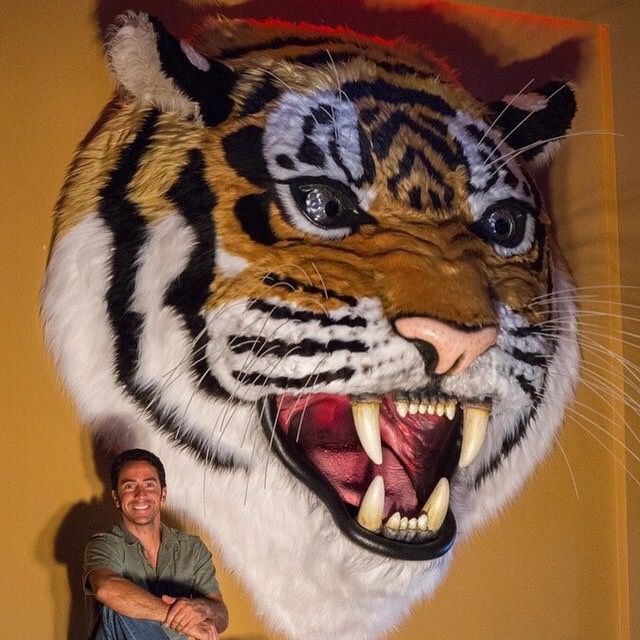Zoofari Party Rental Jungle Theme corporate Party Zoo Rental Tiger Decor Tiger Sculpture by Matthew McAvene.jpg