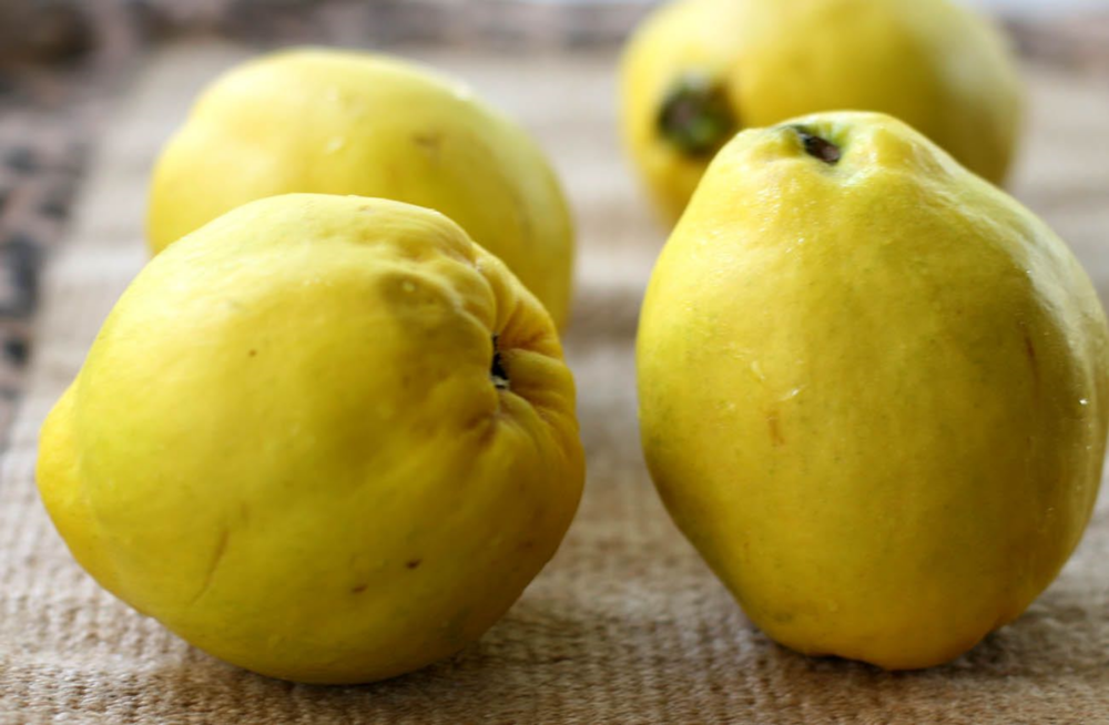 Quince - looks a bit like a cross between a pear and a apple.