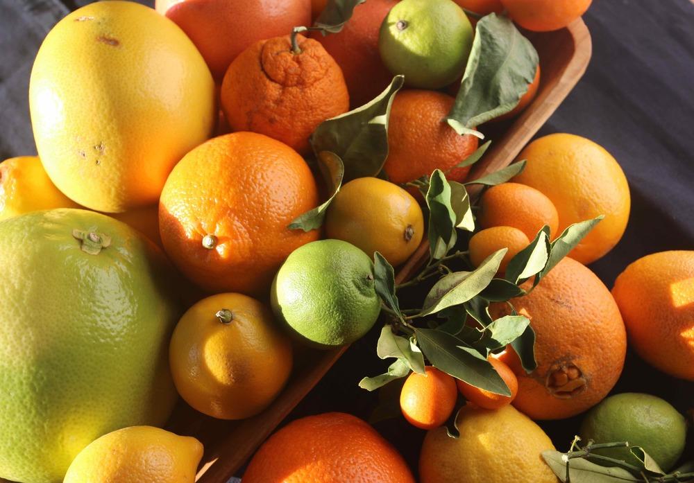 Winter citrus - pomelo, grapefruit, tangelos, tangerines, blood oranges, navel oranges, Meyer lemons, Eureka lemons, limes and kumquats, all from local farmers market and gardens.