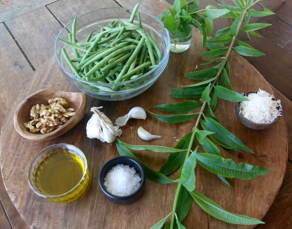 Ingredients for Lemon Verbena and Lemon Balm Pesto