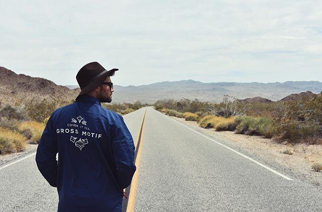 Road trippin' through Joshua Tree