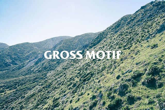 Get out there and go Splorin with the Gross Motif Adventure Club. New gear available now. Link in bio 🌿