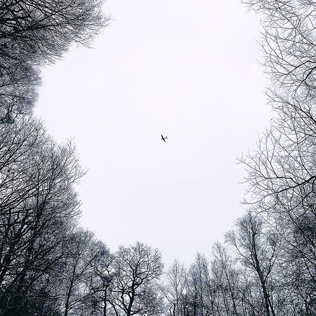 🛩 - Sometimes nowhere, is the best place to be... - - #photography #forest #plane #nature #winter #sky #moment #architecutre #minimalism #walking #adventure #london #art #design #vsco #vscocam