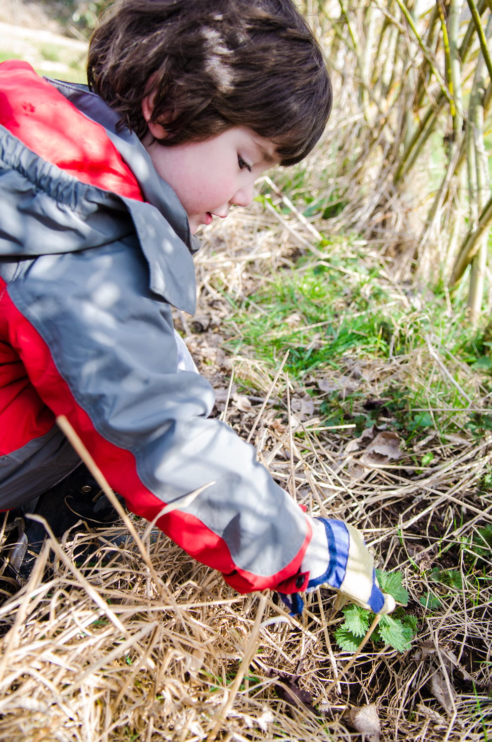 "I've found collecting is very high up on   the children's agendas on Forest School, and they quite often want to bring natural treasures back inside with them. And who can blame them. ""Finders, Keepers"" right?"