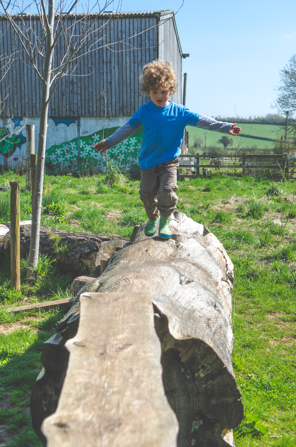 I'm on top of the     world!    The children have been able to test their mettle on a variety of resources, balance and co-ordination being an important learnt skill whilst traversing a log like this.
