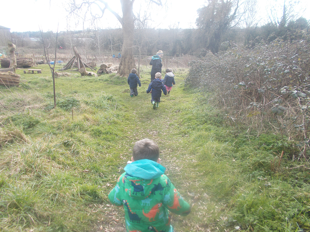 Forest School at Free Rangers