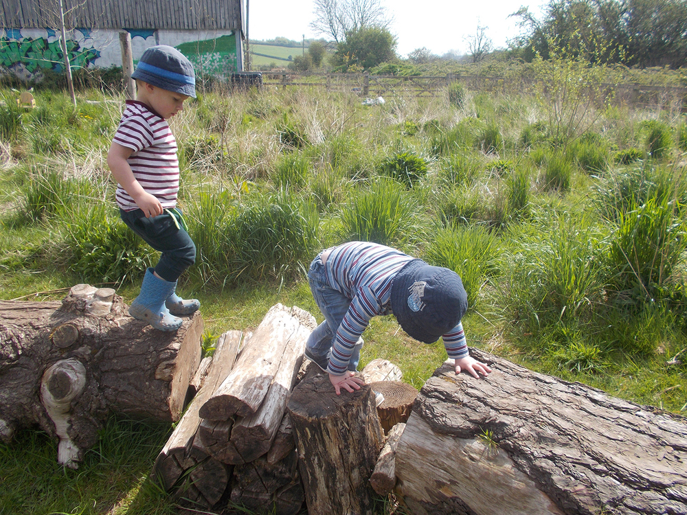 Climbing on the Timber Trail