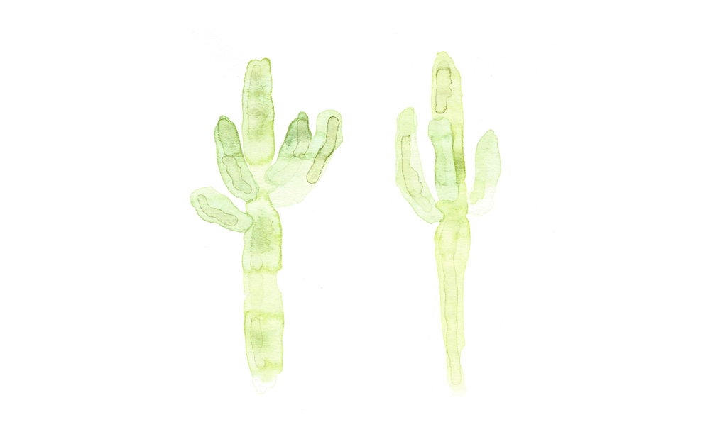 CACTI II   by   FIVE