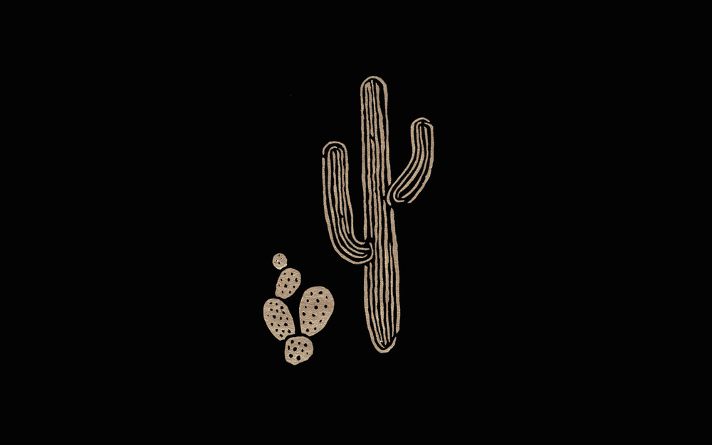 CACTI IV  by  FIVE