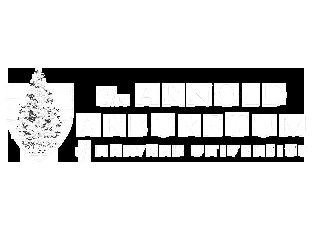 arnold arboretum harvard university logo