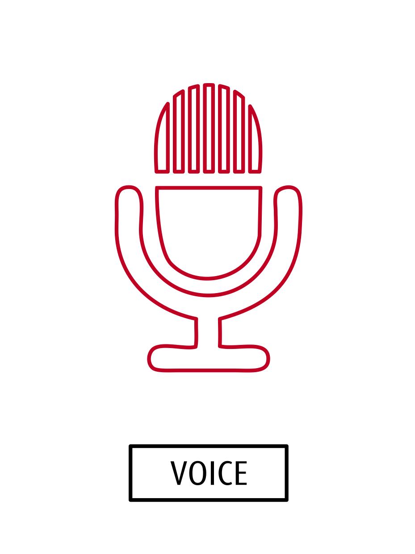 The Voice Icon
