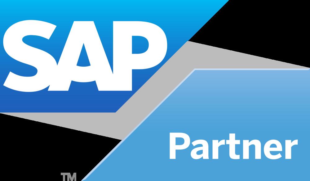 SAP è illeader mondiale degli ERP.