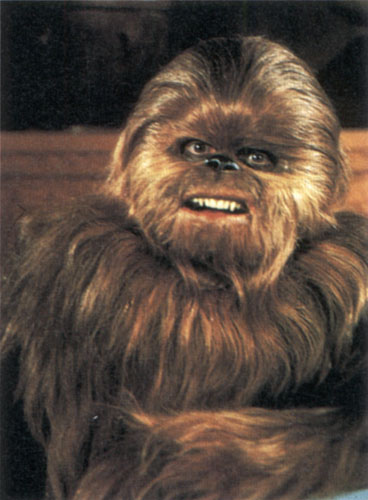 Chewbacca's son Lumpy