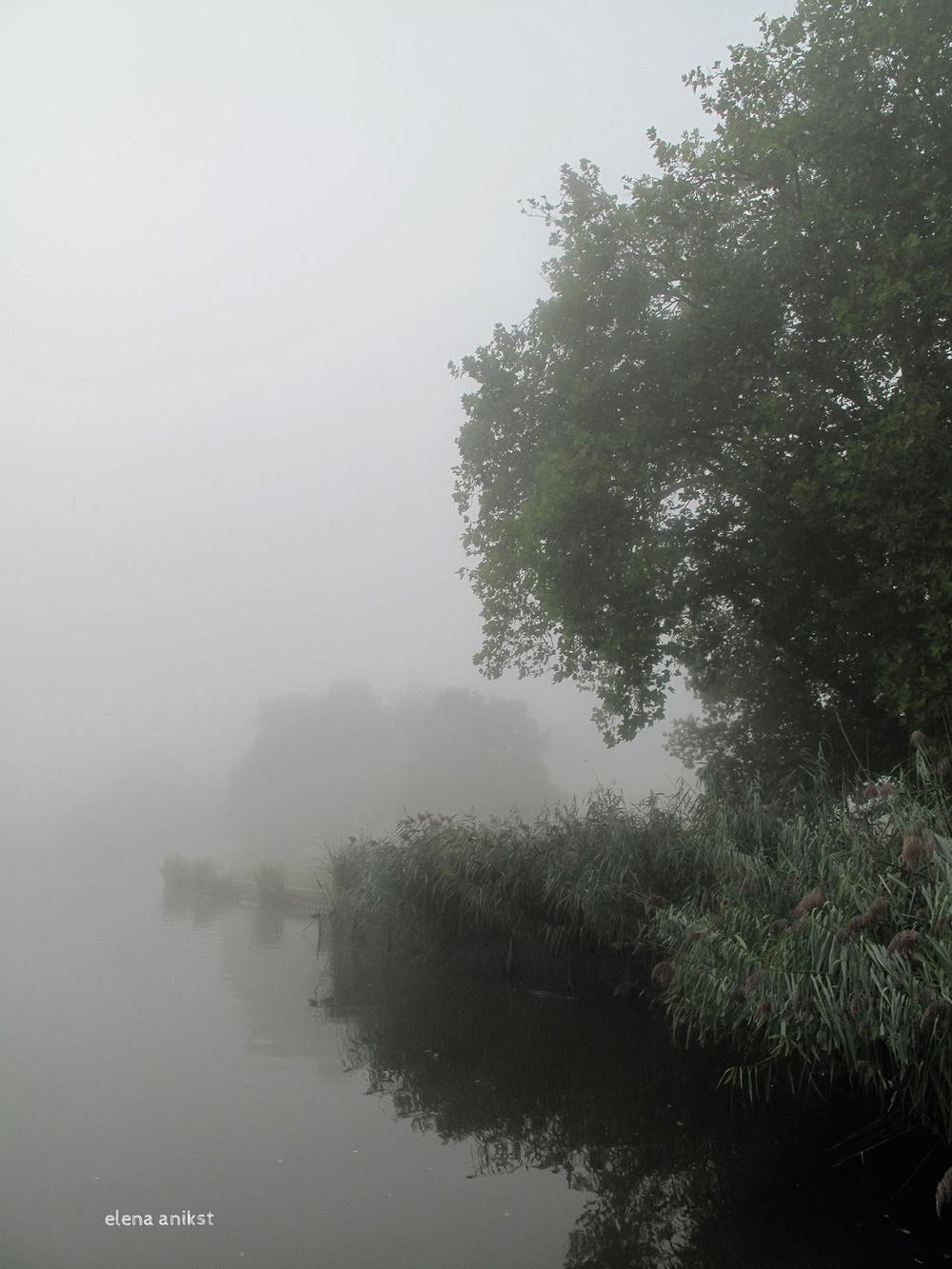 Hampstead Heath 2013